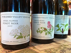 A line up of older wines from Pyramid Valley