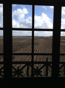 Vast Pontet-Canet vineyard view from the tasting room
