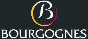 BIVB Logo (black)